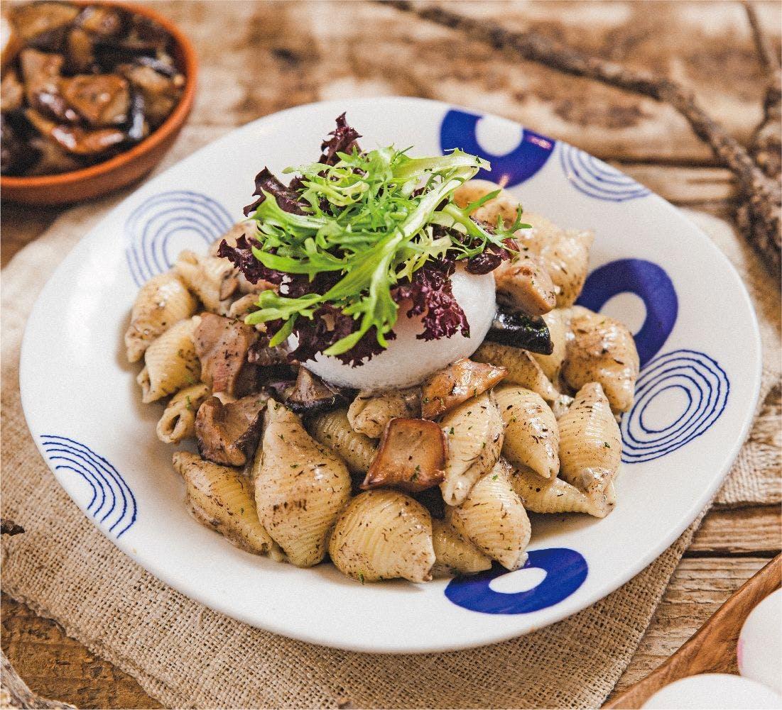 奶油松露野菇貝殼麵